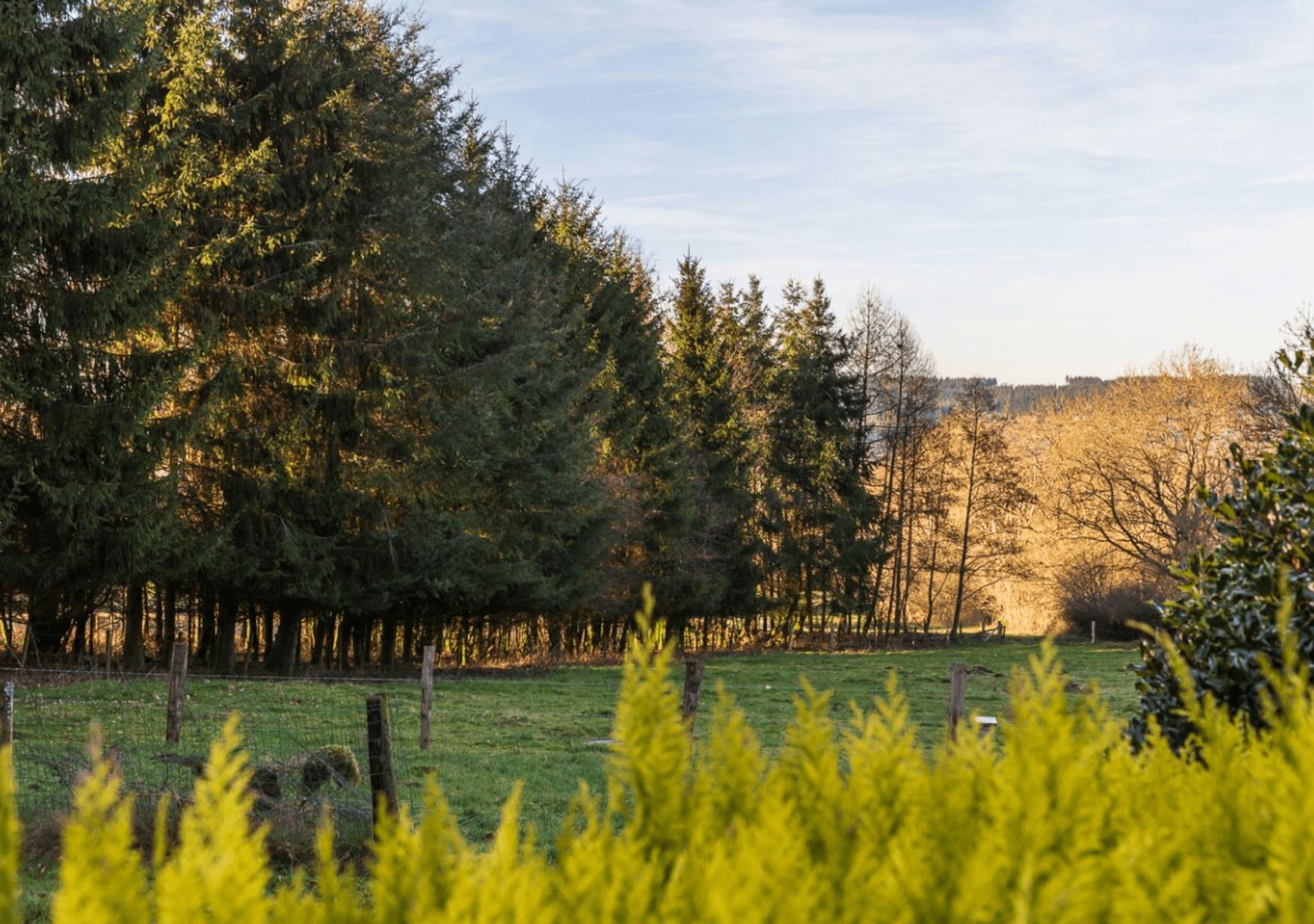 Recharge Retreat Belgien Landschaftsansicht